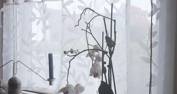 gardinenideen von nasha ambrosch. Black Bedroom Furniture Sets. Home Design Ideas