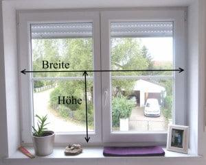 moderne scheibengardinen bei nasha ambrosch. Black Bedroom Furniture Sets. Home Design Ideas