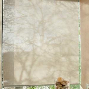 Rollo transparent Creation Baumann