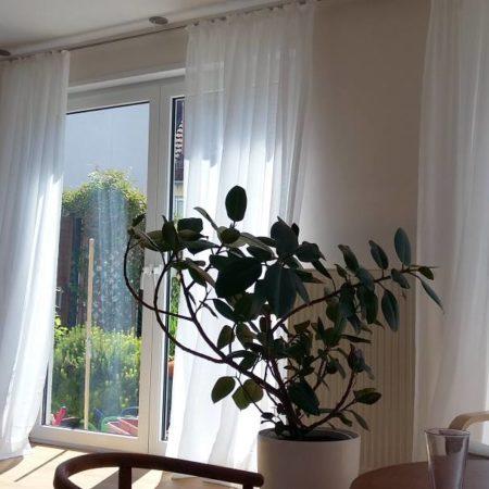 dekostoffe kaufen von creation baumann. Black Bedroom Furniture Sets. Home Design Ideas