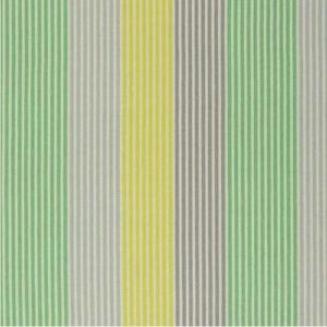 Vorhangstoff-Streifen-Brera Colorato-Designers-Guild